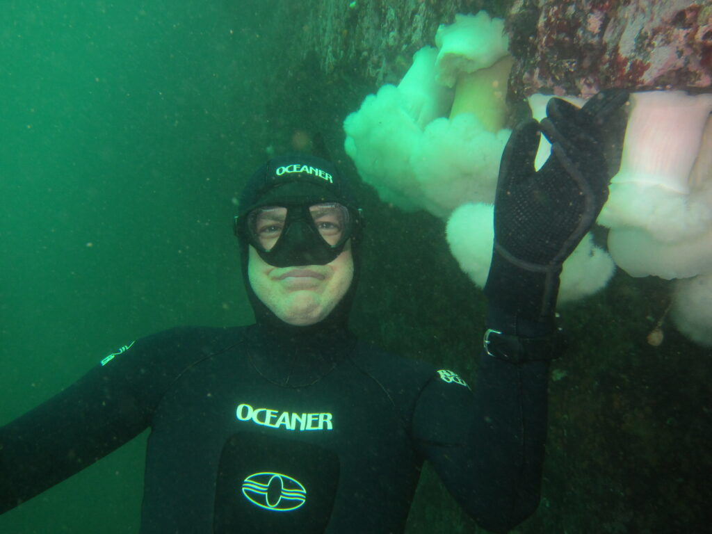 @wrick in Porteau Cove, enjoying plumose anemones growing on a ship wreck.